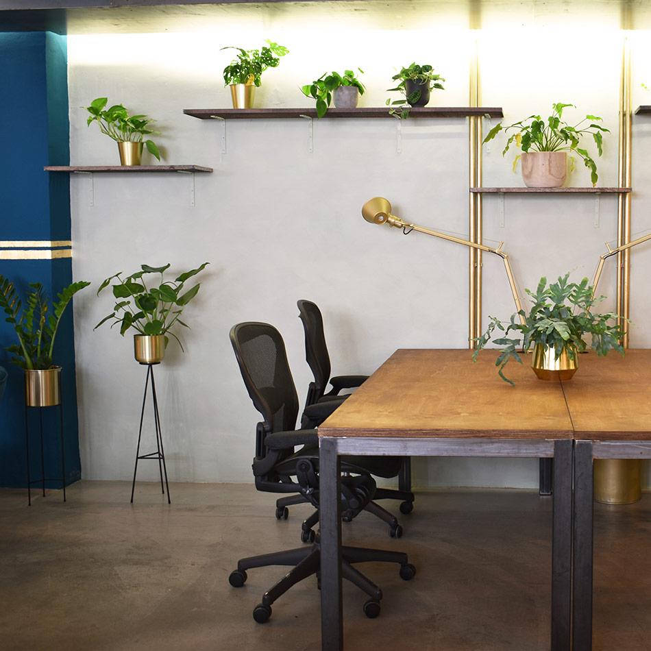 dedicated desk coworking space
